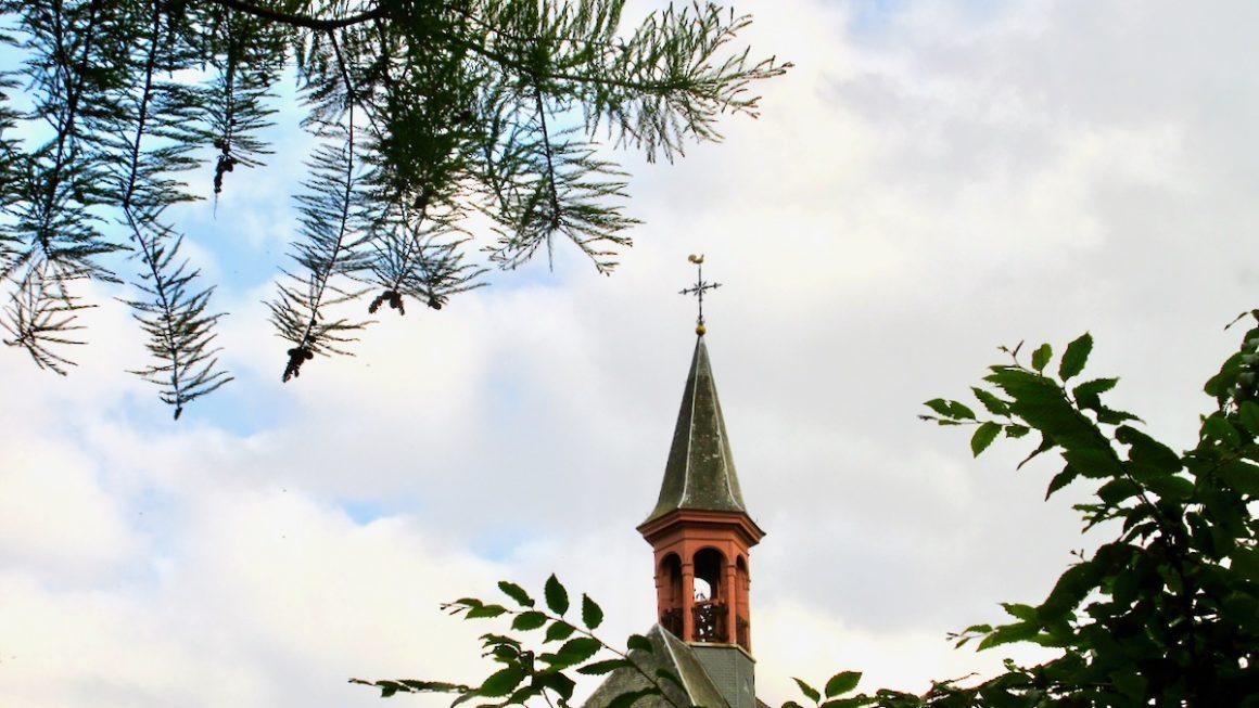 Homilie Pater Piet 21 mei 2020 : Hemelvaart van de Heer