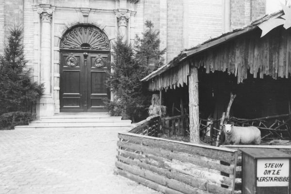 Toen had onze kerststal een levende os en een ezel die bij de kribbe stonden, en loslopende schapen, foto's uit 1969 en 1978