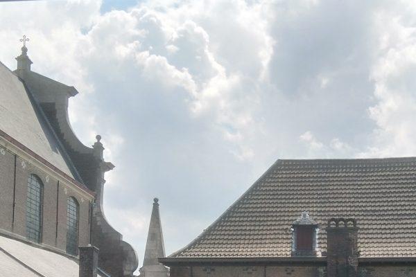 Homilie Pater Piet Hoornaert 11 juli 2021 : 15de zondag door het jaar B