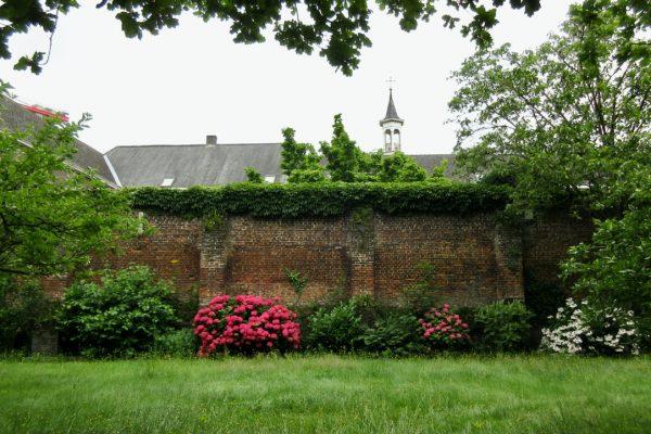 Homilie Pater Lukas Martens 29 augustus 2021 : 22ste zondag door het jaar B